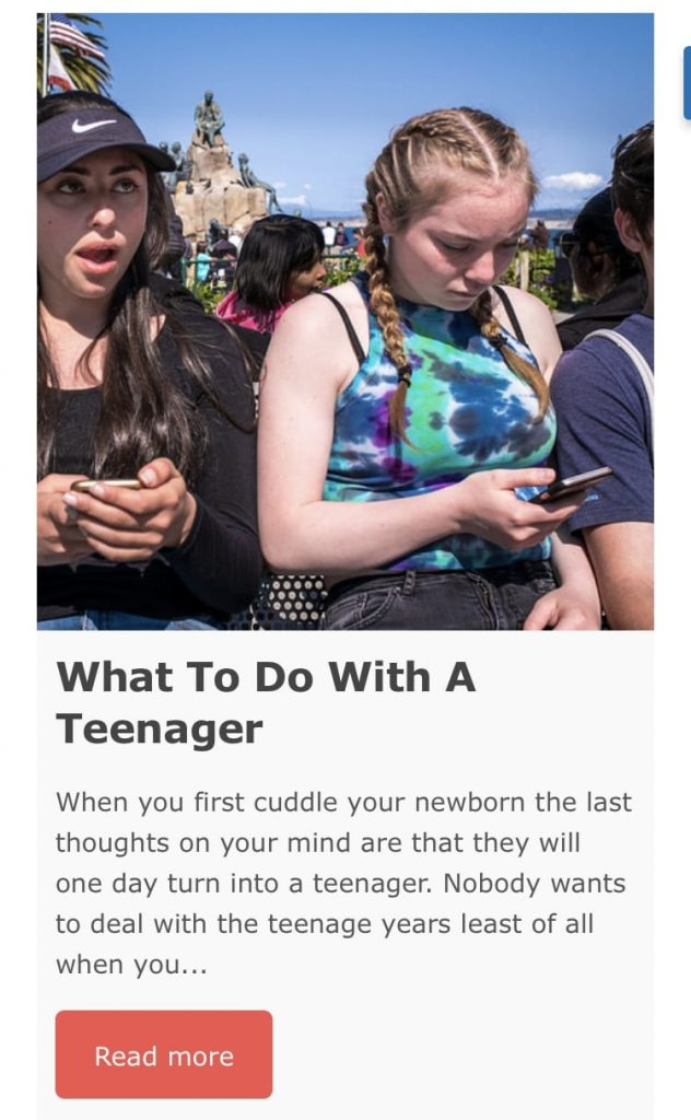 screen shot of what to do with a teenager article